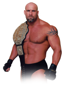goldberg-gold-belt